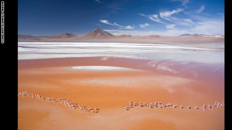 بالصور.. مساحات شاسعة من الجمال حول العالم