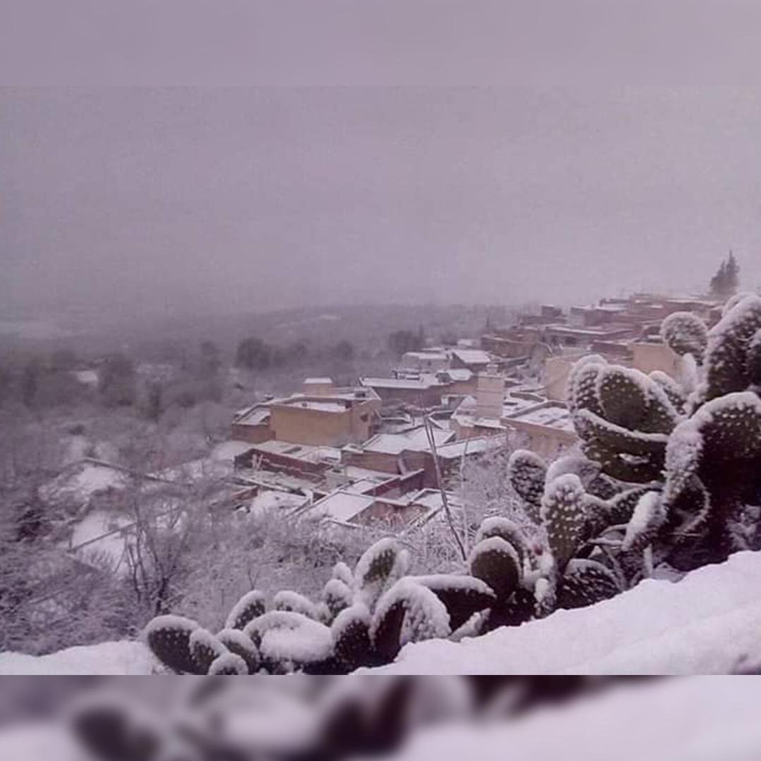 تونس .. الثلوج الآن 2019/1/24
