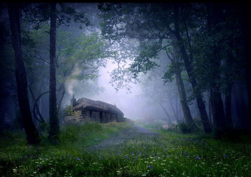 منزل بإحدى الغابات في اسكتلندا