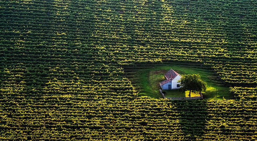 المنزل الصغير بين الحقول في المجر