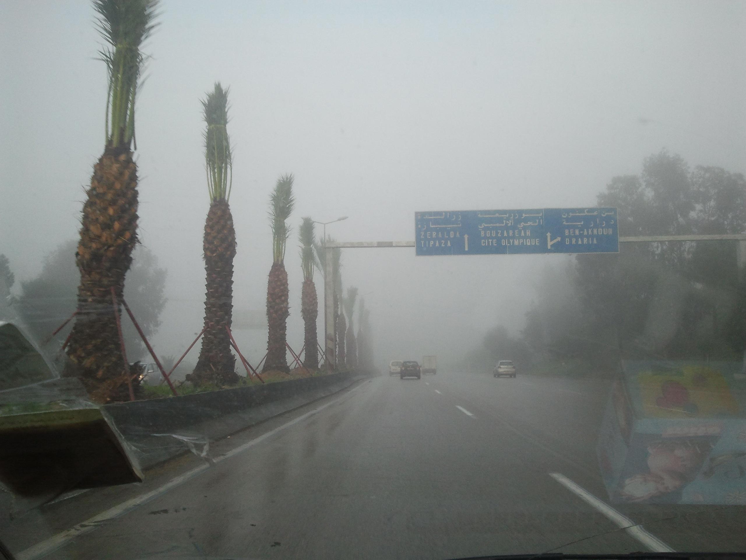 اضطراب جوي نشيط شمال الجزائر